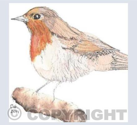 Christmas Robin - by Christine Hounslow