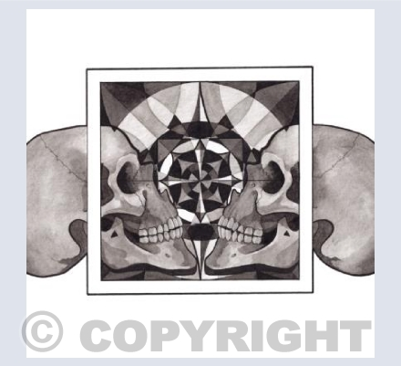 Skull Mandalas, Reflection 2017