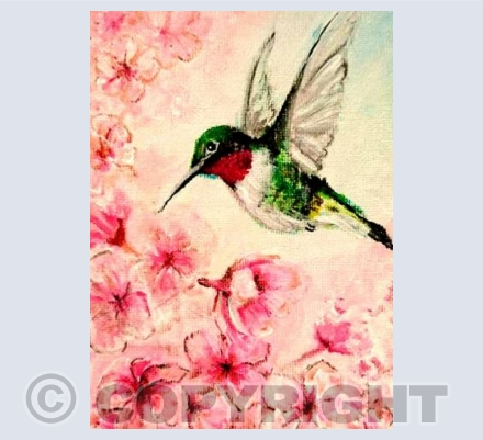 Humming Bird In Blossom