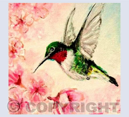 hummingbird in blossoms