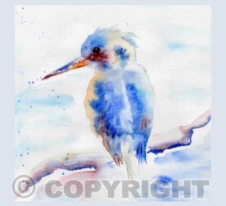 Kingfisher Blues