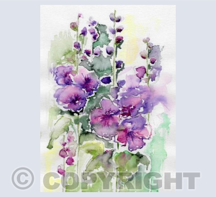 Jolly Hollyhocks