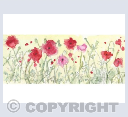 Freestyle poppies