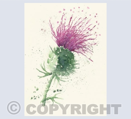 loose thistle