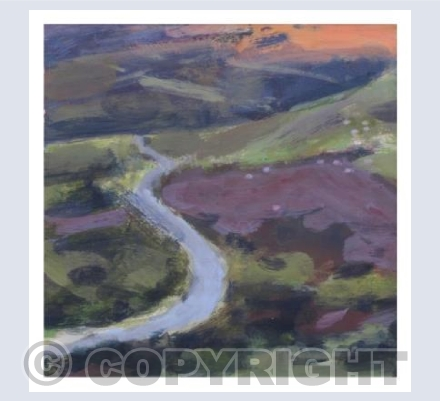 Out on Dartmoor - Winding road