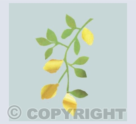 Lemon bough