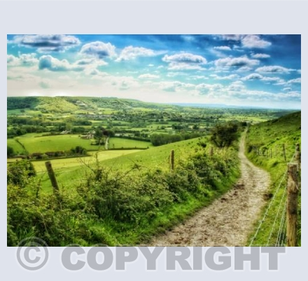 The Track, Hambledon Hill, Dorset.