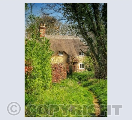 country cottage 4