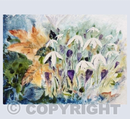Snowdrops and crocus