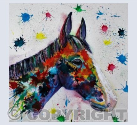 COLOUR SPLASH HORSE