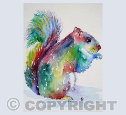 RAINBOW SQUIRREL