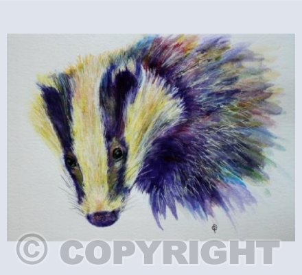 RAINBOW BADGER