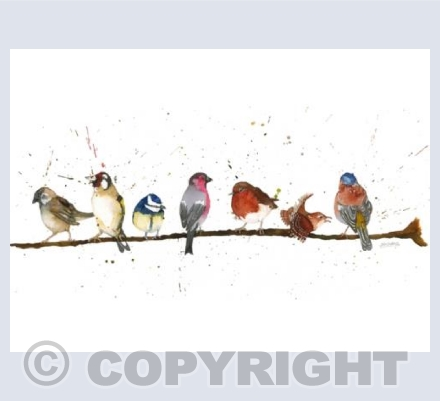 Birds on the Branch