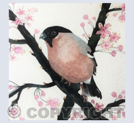 The Bullfinch and Blossom