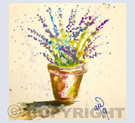 Pot of Lavender