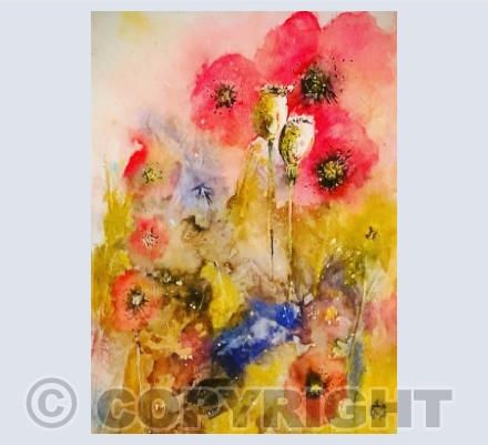 Poppies and seed heads