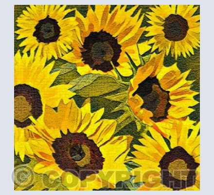 'Textured Sunflowers'