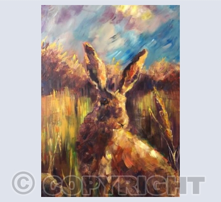 Hare in Autumn.2