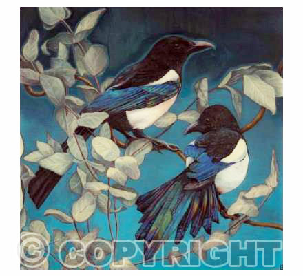 Magpies and Eucalyptus 1