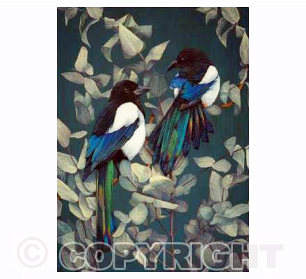 Magpies and Eucalyptus 2