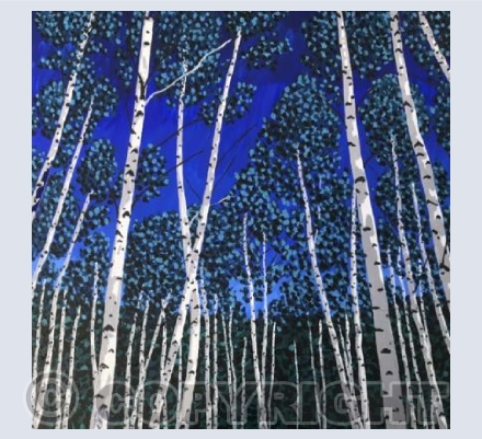 Silver Birches at Dusk
