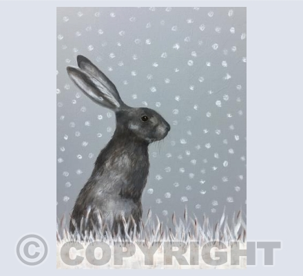 Snowy fgqrey rabbit