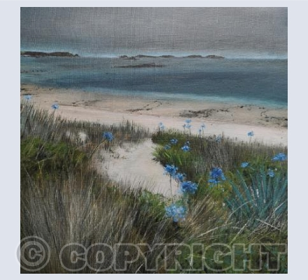 """Agapanthus In The Dunes"""