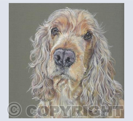 Mel Golden Cocker Spaniel - Gouache Painting