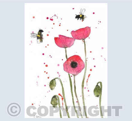 'Poppies & Bees'