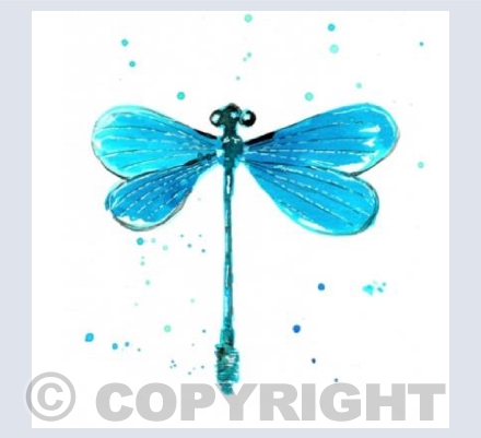 'Dragonfly'