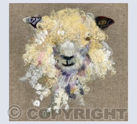 Cotswold Sheep IV