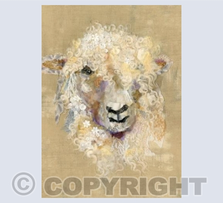 Cotswold Sheep #12