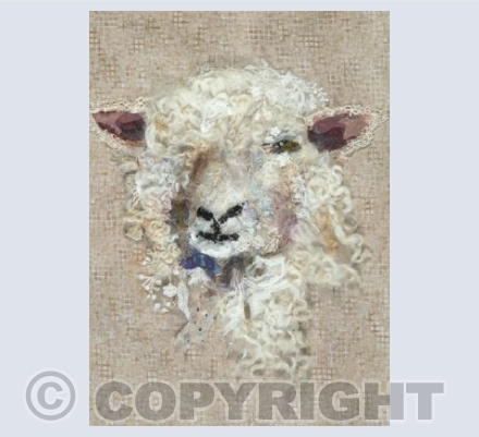 Cotswold Sheep #27