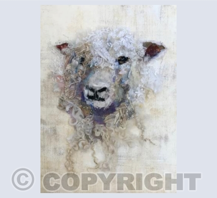 Cotswold Sheep #28