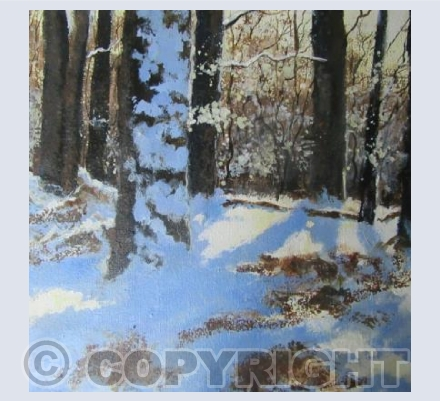Snow on the Trees, Bright Sun, Blue Shadows