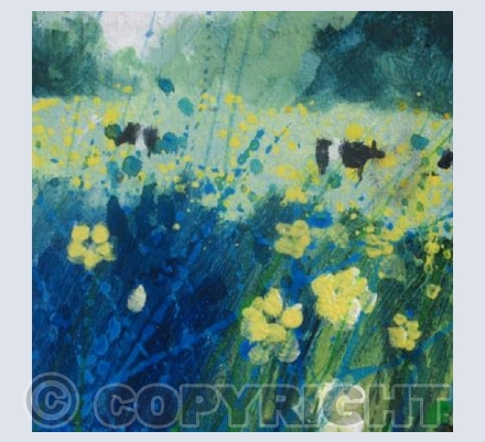 Buttercups and Cows