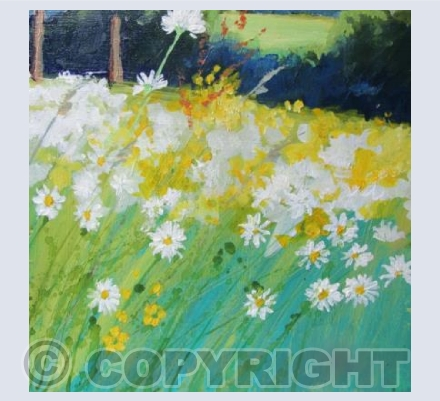 Bright Sun on a Meadow of Daisies
