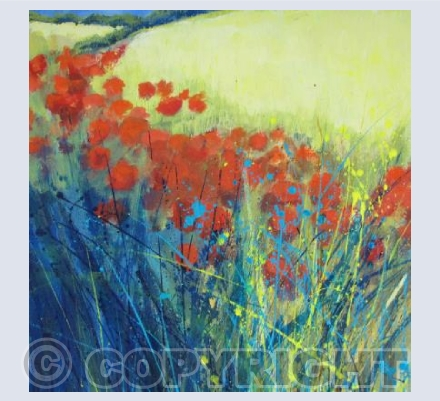Bright Poppies at the Edge of the Field