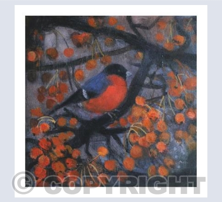 The bullfinch in January