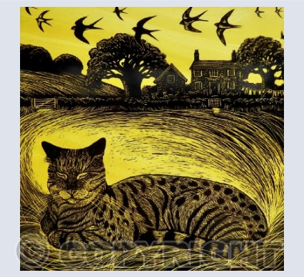 Dreaming of Summer
