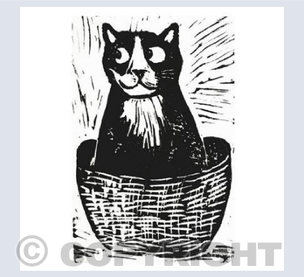 cat in a basket square