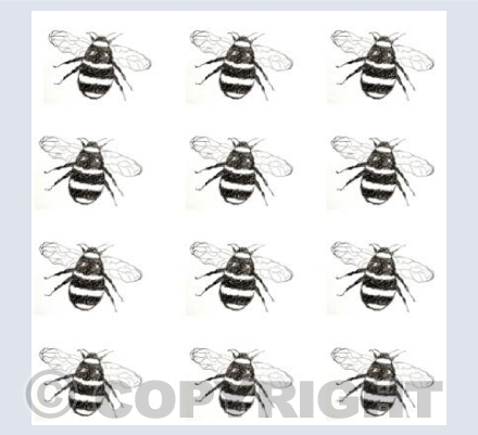 Twelve Bees Black and White
