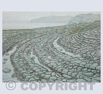 Kilve Beach at low tide