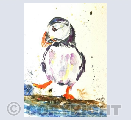 Puffin - Splashing about!