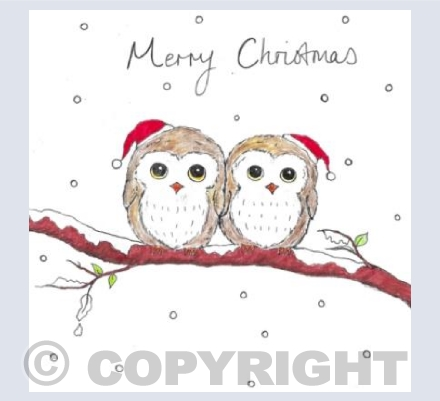 Cute Merry Christmas owls