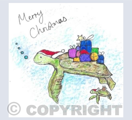 Have a turtlely awesome christmas!