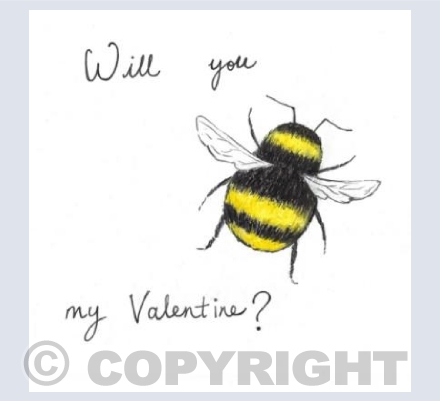 Will you Bee my Valentine?