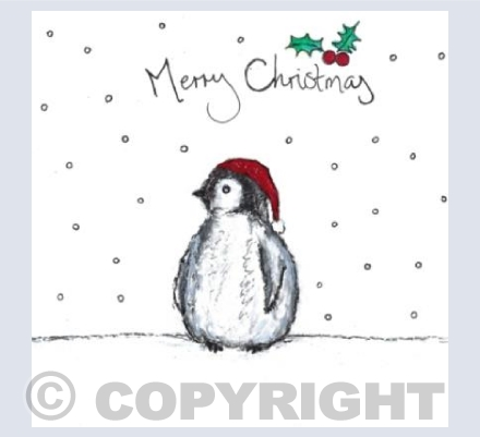Norman the Baby Penguin says Merry Christmas!