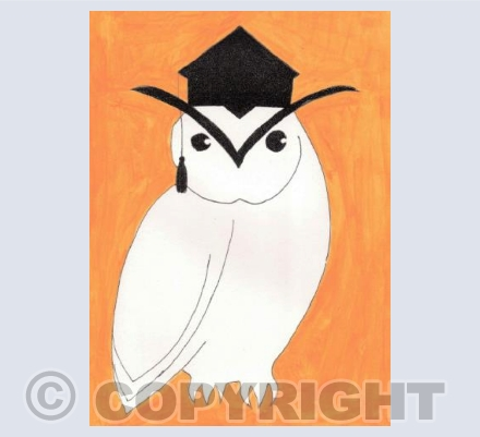 The Educated Owl