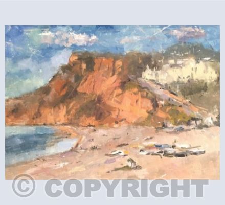 Budleigh, Beach and Boats